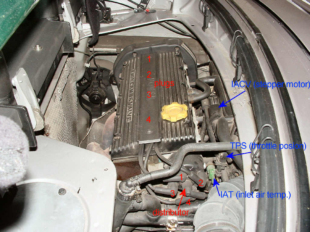 D Piston Rings Valve Seals further Attachment in addition D T Spark Plug Application Chart Update Spark Plug Application Chart also Weds Kranze Lxz For Sale Uk Europe additionally D Fs Ca S V Hatch K Obo Img. on engine spark plugs location